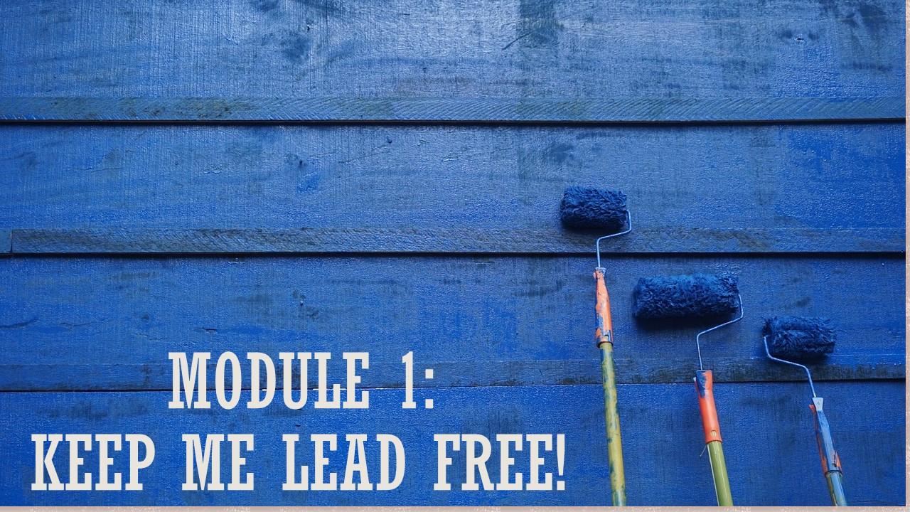 Module 1: Keep Me Lead Free