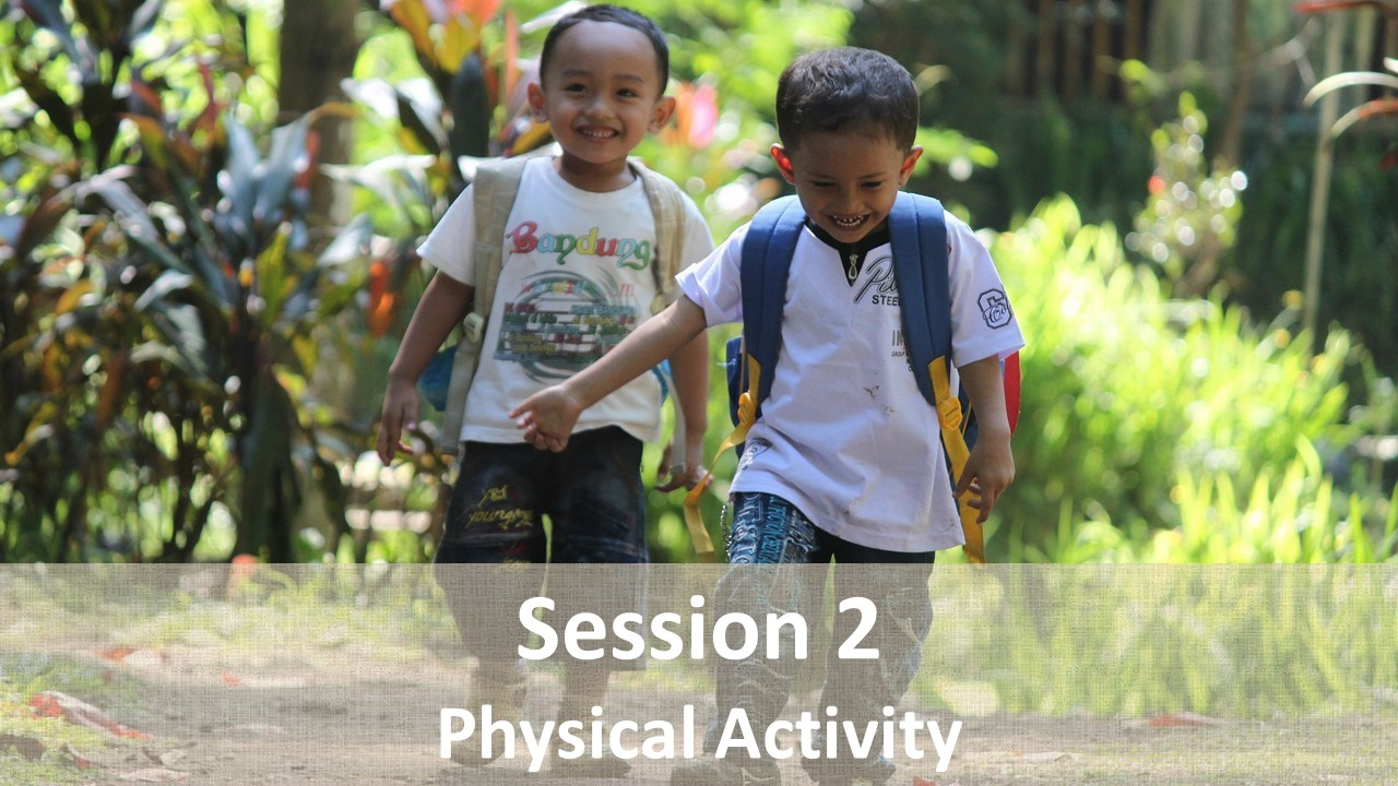 Session 2: Physical Activity